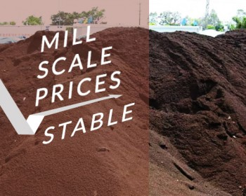 Indian Mill Scale Prices